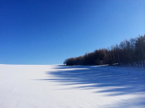綺麗過ぎる真冬の一日。_f0096216_166355.jpg