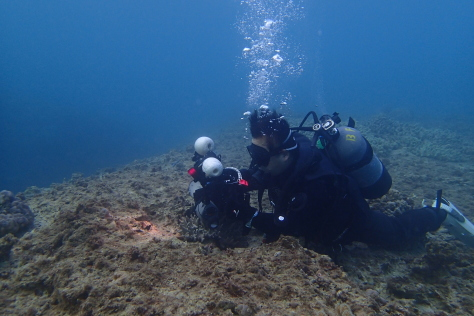 12月19日瀬底島ダイビングなっし~_c0070933_23122409.jpg