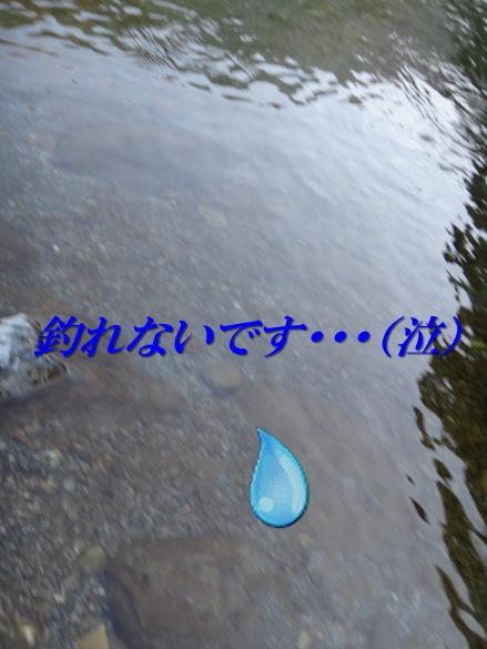 a0156834_222942.jpg
