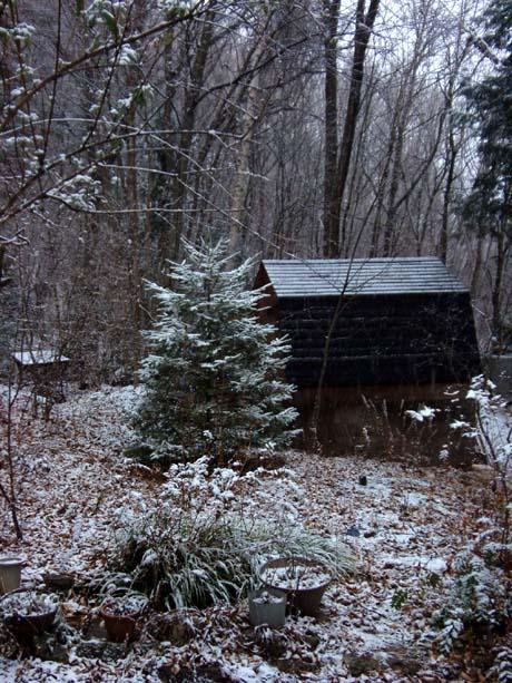 雪が降る♪_d0127634_14175799.jpg