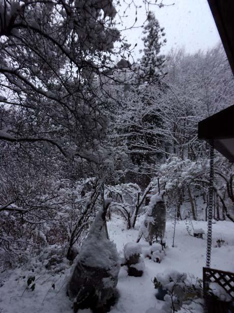 雪が降る♪_d0127634_14225016.jpg