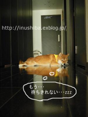 a0286855_1124581.jpg