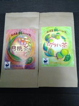 月桃茶_a0061057_23124879.jpg