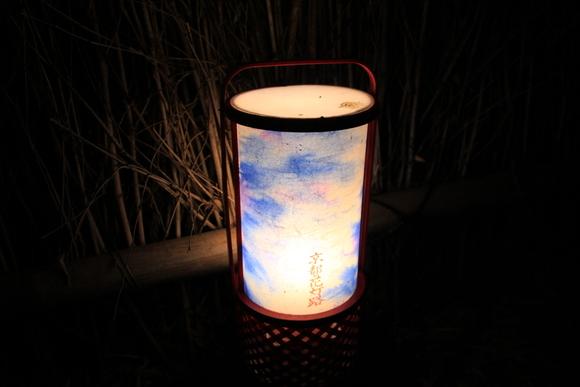 嵐山 ライトアップ!_d0202264_15524389.jpg