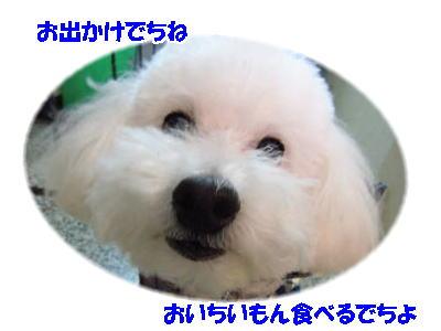 d0020869_14353981.jpg