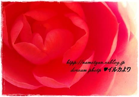 f0304384_23143681.jpg