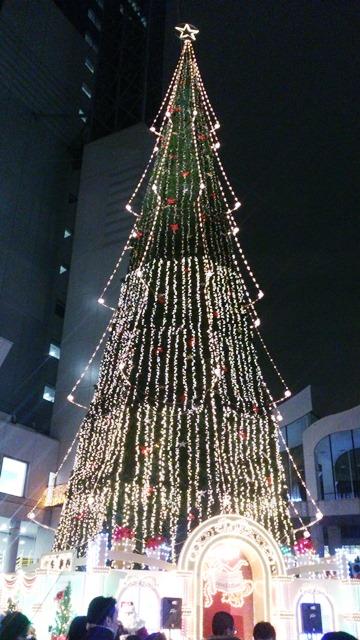 世界最大のツリー_e0167593_1133089.jpg