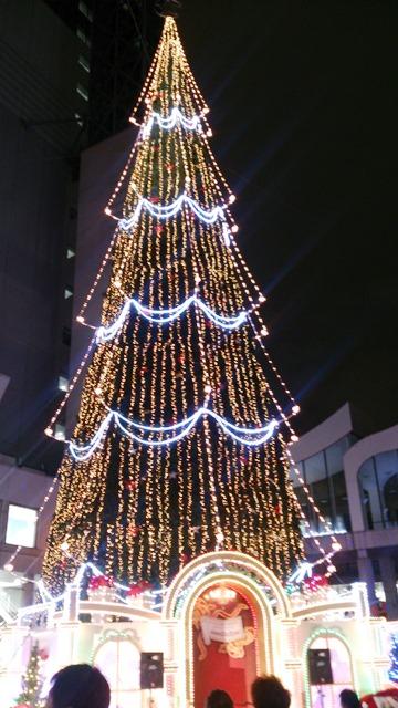 世界最大のツリー_e0167593_1135521.jpg