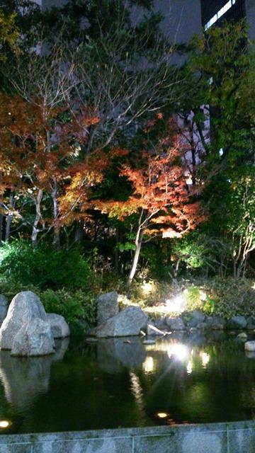 世界最大のツリー_e0167593_1241044.jpg