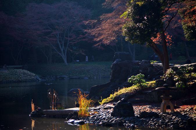 小石川後楽園の紅葉2_a0263109_131048100.jpg