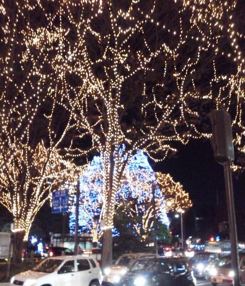 勾当台公園SENDAI光のページェントからメリークリスマス!_b0081121_611419.jpg