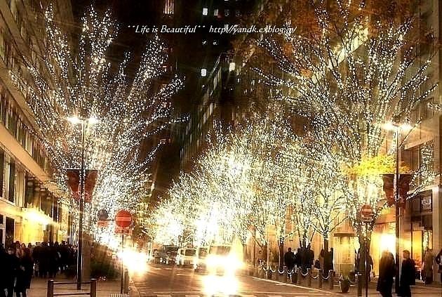 Xmas Illumination 2013*Marunouchi_d0083623_15451528.jpg