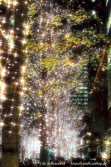 Xmas Illumination 2013*Marunouchi_d0083623_15464230.jpg