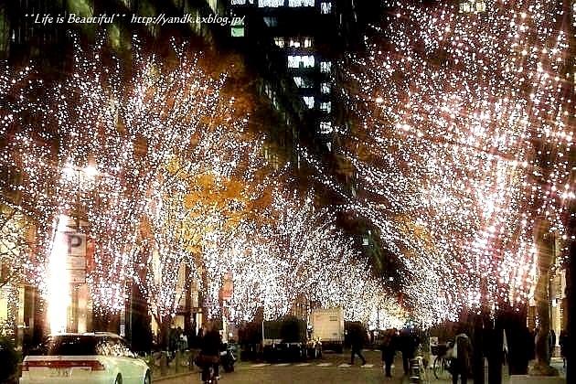 Xmas Illumination 2013*Marunouchi_d0083623_1547325.jpg