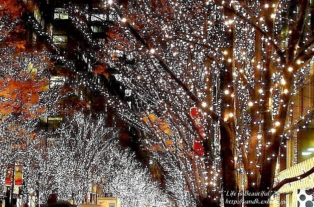 Xmas Illumination 2013*Marunouchi_d0083623_15475893.jpg