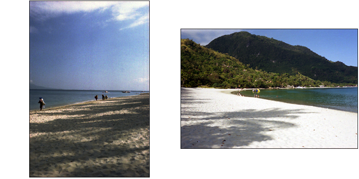ALBUM A DAY IN THE PUERTO GALERA_e0202828_14242540.png