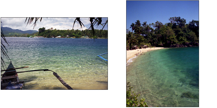ALBUM A DAY IN THE PUERTO GALERA_e0202828_14261810.png