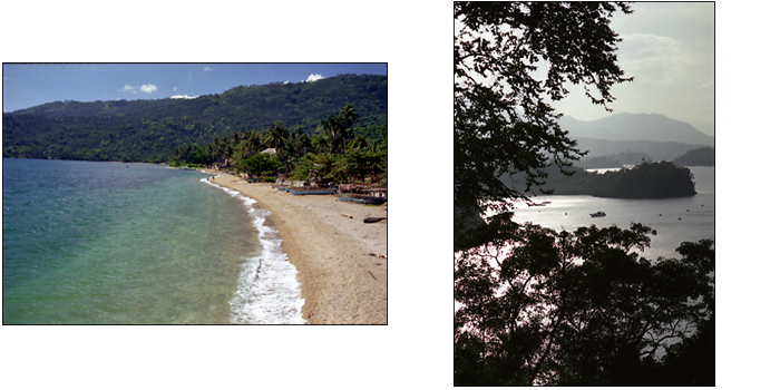 ALBUM A DAY IN THE PUERTO GALERA_e0202828_14272945.png