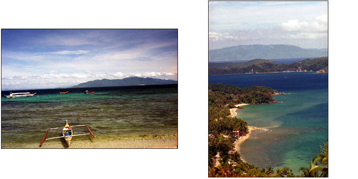 ALBUM A DAY IN THE PUERTO GALERA_e0202828_14303868.png