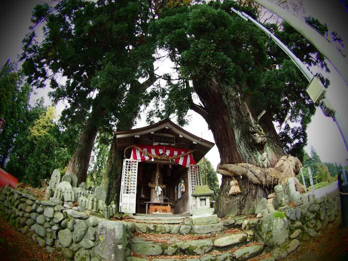 ほだれ神社 - Ⅱ                新潟県・長岡市下来伝_d0149245_23254897.jpg