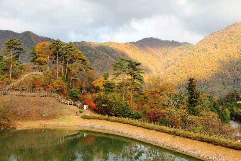 出雲の旅 (1) いわみ温泉 香遊館と香木の森公園_c0011649_9343844.jpg