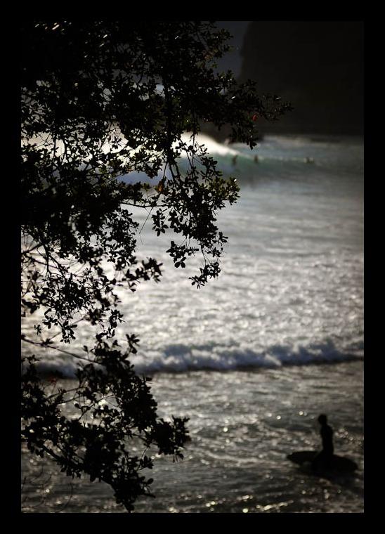 aloha!  friday!!_f0303670_13301156.jpg
