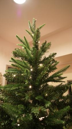 もうすぐクリスマスですね~♪_f0029571_9461234.jpg