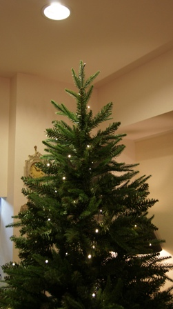 もうすぐクリスマスですね~♪_f0029571_946327.jpg