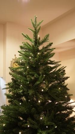 もうすぐクリスマスですね~♪_f0029571_9465333.jpg