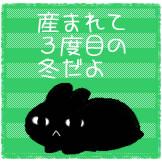 d0247281_2085280.jpg