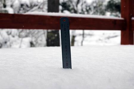 雪のお便り_f0145483_13111774.jpg