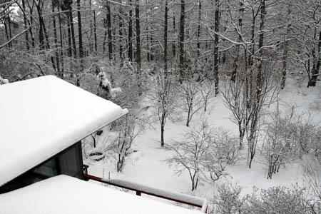 雪のお便り_f0145483_1392015.jpg