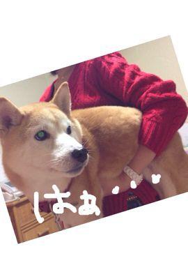 冬ネイル!犬物語_c0071924_23261138.jpg