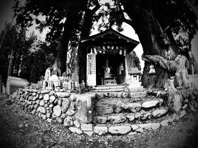 ほだれ神社 - Ⅲ                新潟県・長岡市下来伝_d0149245_2239364.jpg