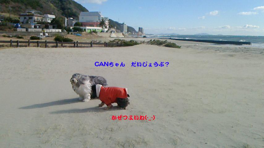 b0050356_23303845.jpg