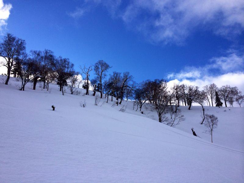 KIRORO  ☆ 北海道_c0151965_1522178.jpg