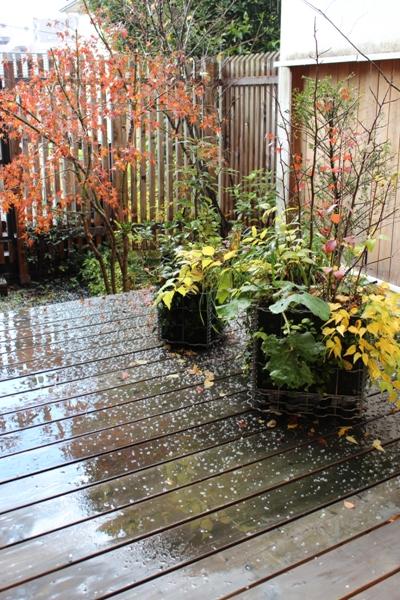 雹(ひょう)が降る_c0310571_05244689.jpg