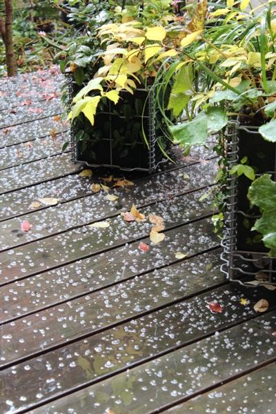 雹(ひょう)が降る_c0310571_05251061.jpg