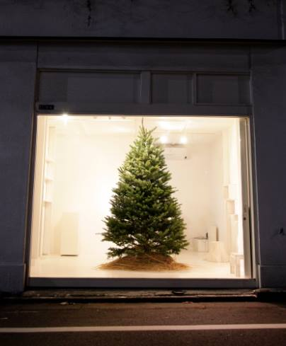btf  ANNEX Christmas☆_b0207873_19341461.jpg