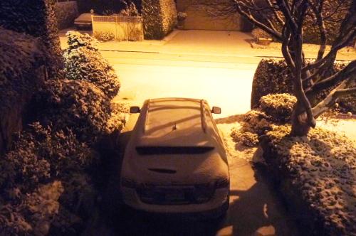雪が積もりました_d0129786_12415353.jpg