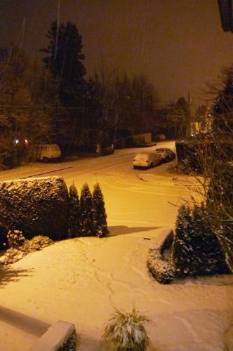 雪が積もりました_d0129786_12462051.jpg