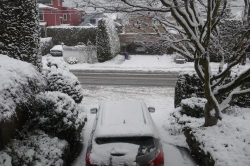 雪が積もりました_d0129786_1250240.jpg