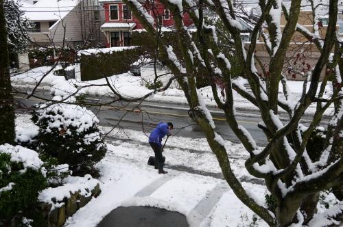 雪が積もりました_d0129786_15191269.jpg