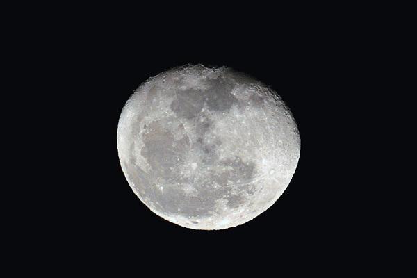 カワセミ久しぶり/ジョウビタキ/大山初冠雪/彗星4つ_b0024798_150193.jpg