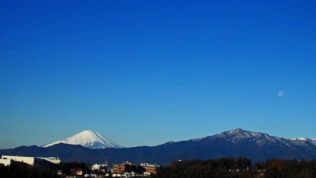 カワセミ久しぶり/ジョウビタキ/大山初冠雪/彗星4つ_b0024798_1554520.jpg