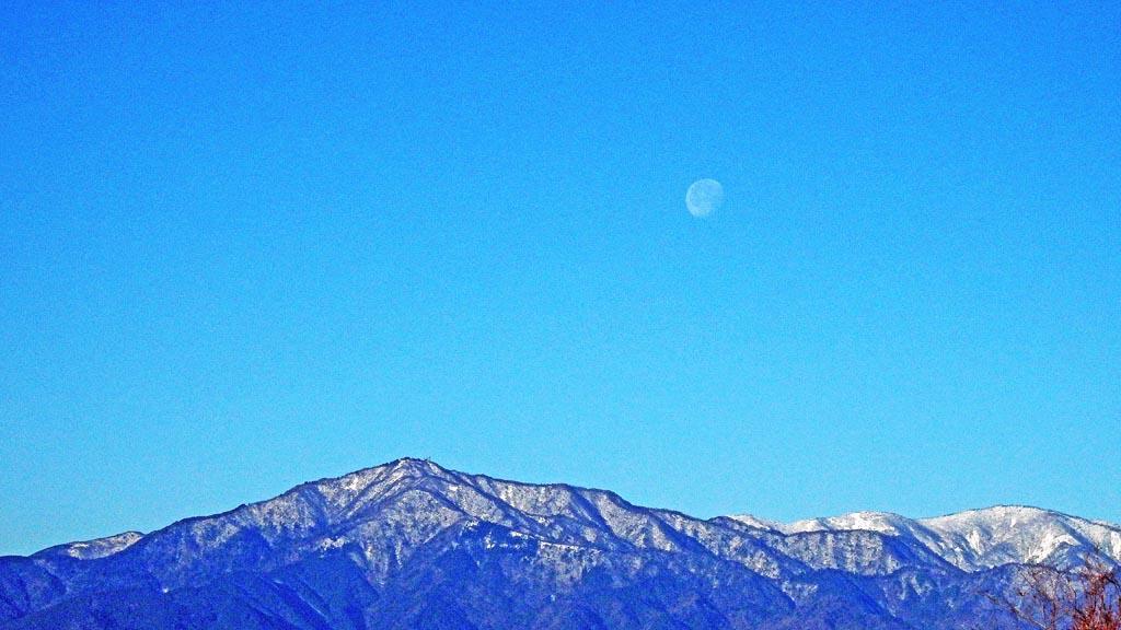 カワセミ久しぶり/ジョウビタキ/大山初冠雪/彗星4つ_b0024798_156033.jpg