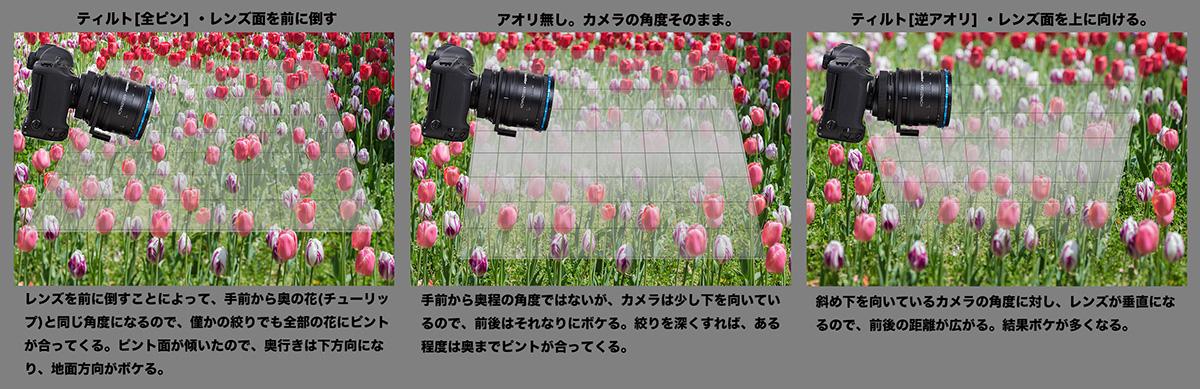 f0274403_14331435.jpg