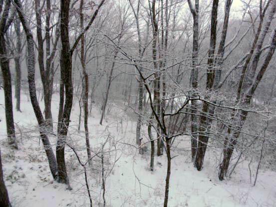 雪があって良かったね_f0064906_1635168.jpg