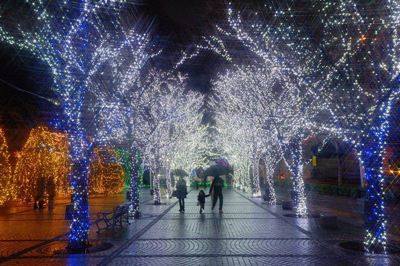 クリスマスイルミネーション@京セラ本社 其の一_f0032011_15322894.jpg