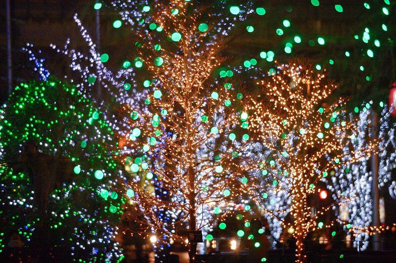 クリスマスイルミネーション@京セラ本社 其の一_f0032011_15343054.jpg